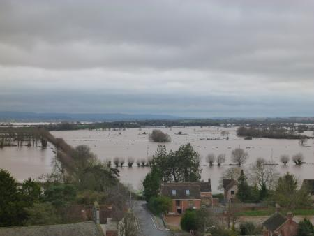 The view from Burrow Mump looking out over the flooded moors