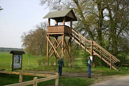 view of crane public viewing platform