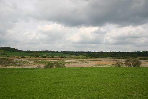 The restored marsh south of Altkunkendorf